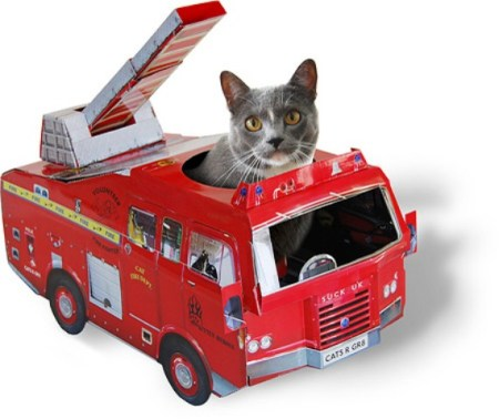 Fire Engine Cat Playhouse