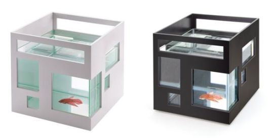 umbra_fish_hotel_aquarium_zniby