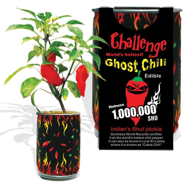 DIY Chili Pepper In A Can