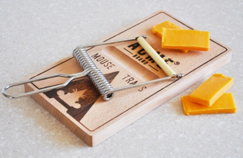 Oh-Snap mouestrap cheese slicer