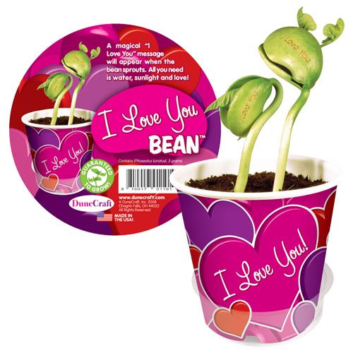 I Love You Bean