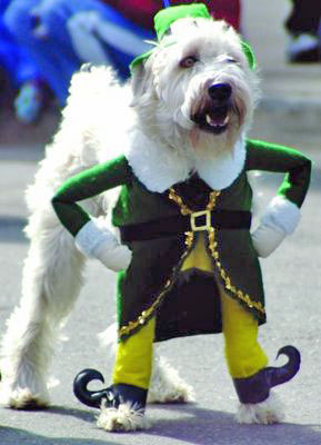 Ireland-Celebrates-Saint-Patricks-Day-9
