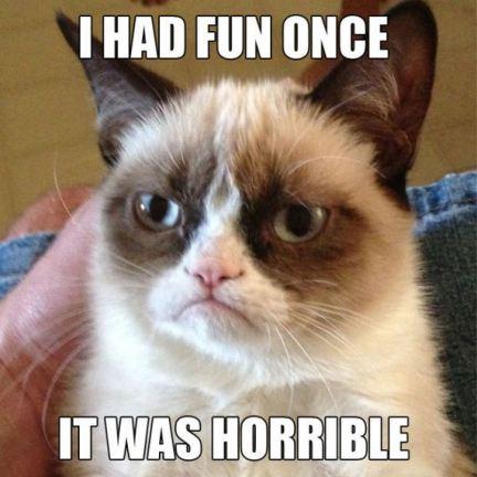 01-grumpy-cat