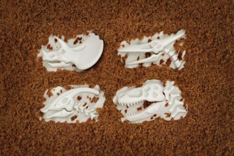 Fossil-Food-Dinosaur-Cupcake-Mold_9907-l