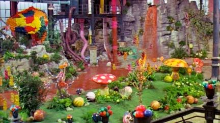 Wonka Factory