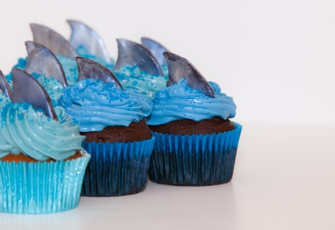 Shark Week Party Cupcakes