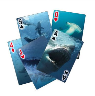 Shark+Playing+Cards