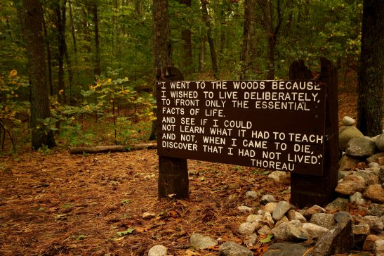 Walden Pond Henry David Thoreau Quotes Inspiration