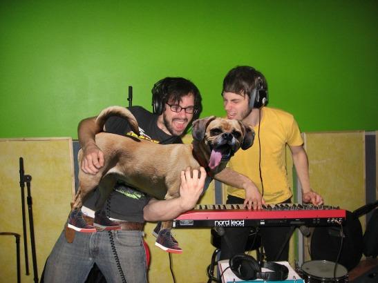 Bass Dog