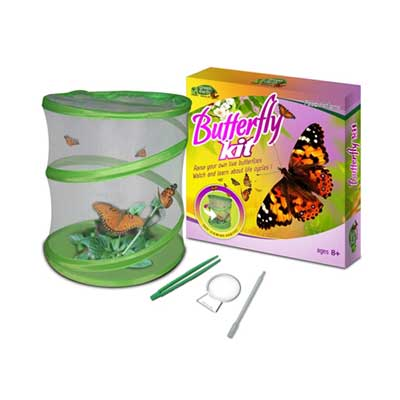 Green Earth Insect Kit