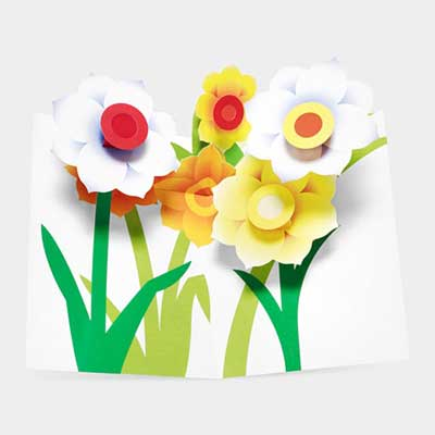 Pop-Up Note Cards Set