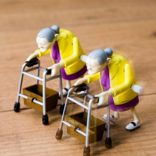 Racing Grannies Wind-Up Toy Gag Gift Funny
