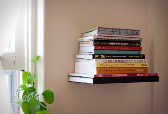 Conceal Shelf Umbra