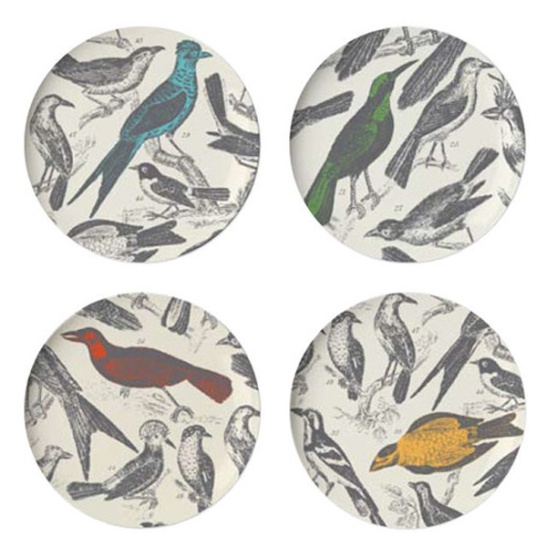 Thomas Paul Ornithology Bird Plates