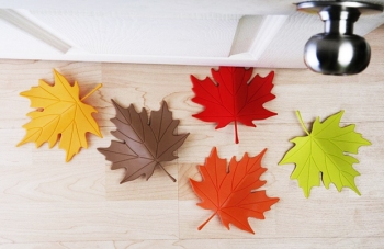 This Leaf doorstop designed by Qualy, inspired by the autumn season leafs falling into our house. Its a rubbery product will slip under the doors which keeps open, and make us to feel the fall season in our house. check it out, you can buy one for you. It cost only $14, can buy it from Amazon Shop.