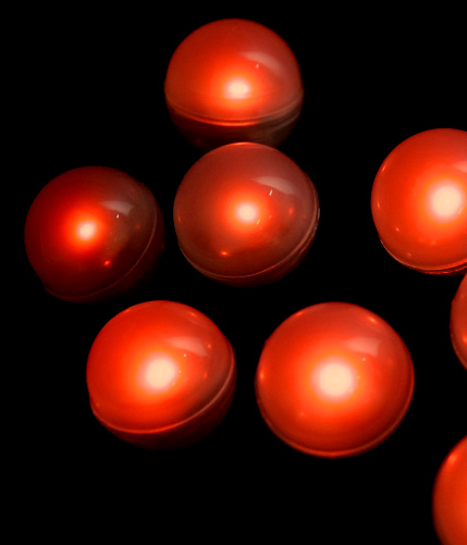 fairy berries lights