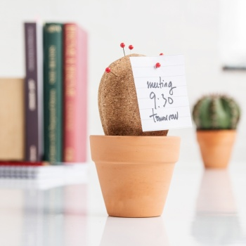 cork-cactus-desktop-organizer-with-push-pins-spikes-1