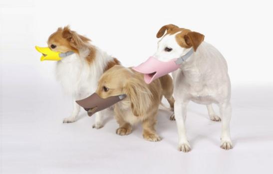 Quack Dog muzzle duck shaped bill