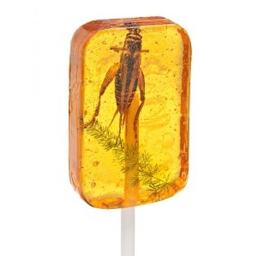 amber_grasshopper_20sucker_cropped-500x500